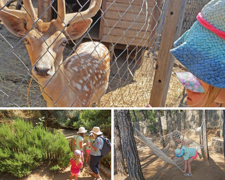 Kos Zia Tierpark