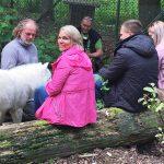 Wolfskontakt-im-Gehege-Wisentgehege-Polarwolf